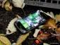 Обзор HTC 7 Mozart: Россия стала первой в Европе и второй в мире