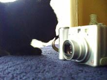 HP iPAQ rw6815: примеры работы встроенной камеры 4