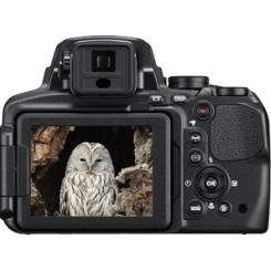 Nikon COOLPIX P900 - фото 4