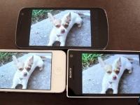 Sony Xperia S против Galaxy Nexus и iPhone 4S: экран