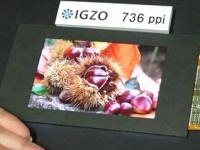 Sharp представила IGZO LCD дисплей с рекордной плотностью пикселей