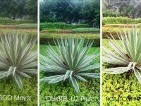 OUKITEL сравнила камеры бюджетников Bluboo maya, Homtom HT17 pro и своего U7 Plus