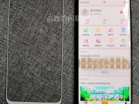 Лицевая панель Meizu 16 на фото рядом с OPPO Find X