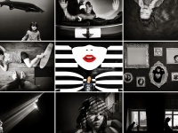 Смартфон и искусство: названы победители международного фотоконкурса от Huawei