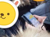 Samsung Galaxy S10 показался на первой «живой» фотографии