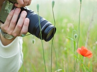 SMARTlife: Заработок на фотобанках - где и как?!