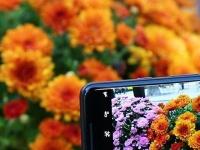 SMARTlife: Покупка цветов в интернете - преимущества сервиса Yes.ua