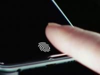 Apple установит в смартфоны огромный подэкранный сканер отпечатков пальцев