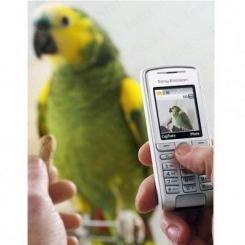Sony Ericsson K310i - фото 5