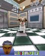The Sims™ 2 Pets для N-Gage