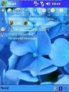 Blue flower - скриншот 1