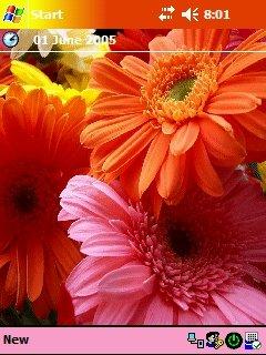 Flowers - скриншот 1