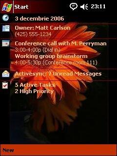 Orange flower - скриншот 1