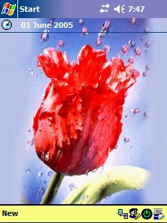 Rose - скриншот 1
