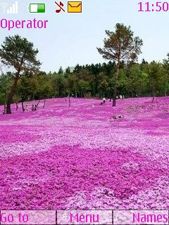 Pink Nature - скриншот 1