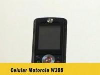 Видео обзор Motorola W388