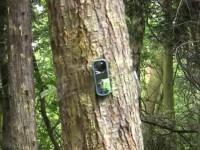 Видео тест Nokia 3720 Classic - Расстрел из пейнтбольного ружья